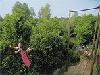 Kinderparadijs bij Erperheide in Belgisch Limburg